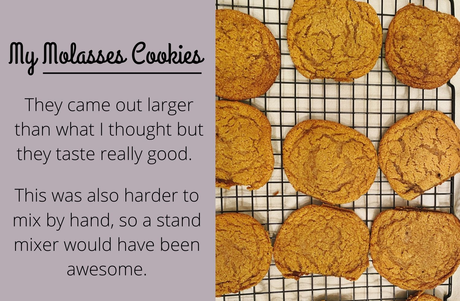 My Molasses Cookies