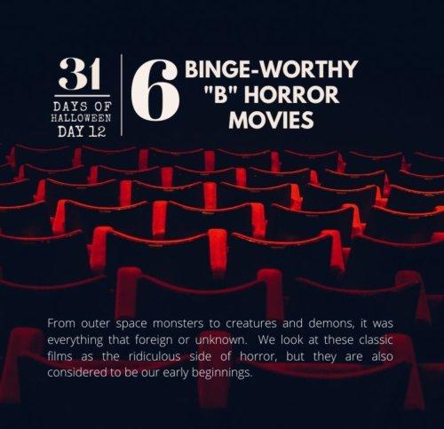Day #12 ... Binge-Worthy B-Horror Movies