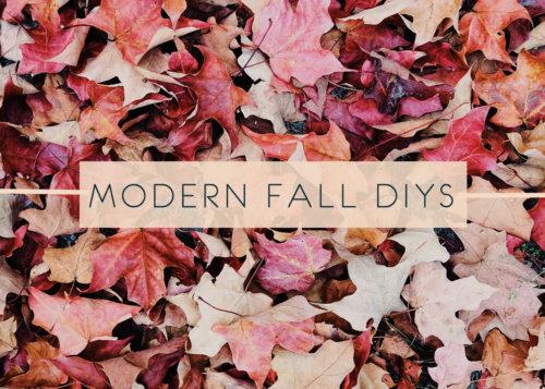Modern Fall DIYs